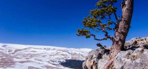 Смотровая площадка со скалы Утюг : Открой Россию в TopTripTip